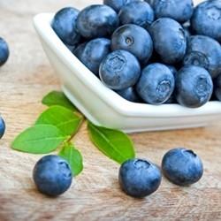 Blueberry Wild (15ml)