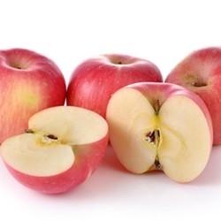 Apple (15ml)